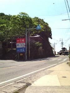 熊野神社 藤 周辺