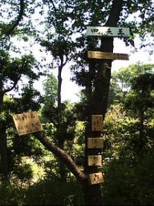 内海四天王 江戸時代後期に妙音寺の住職が発願安置したとされる。 <南方増長天>