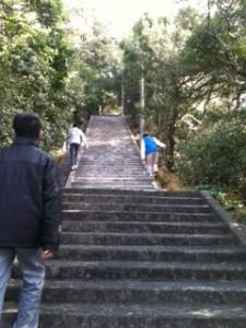 長い階段熊野社
